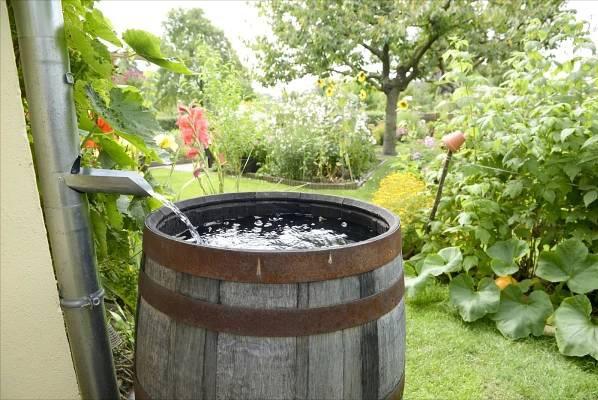 Jak wybrać zbiornik retencyjny do zbierania wody deszczowej
