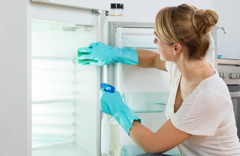 Jak właściwie dbać o lodówkę i wybór najpopularniejszych