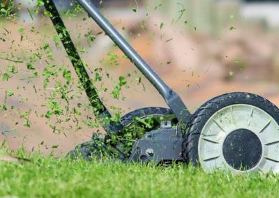 Ładny trawnik dzięki wertykularzowi