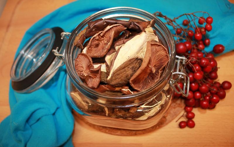 Jak prawidłowo wysuszyć grzyby w piekarniku